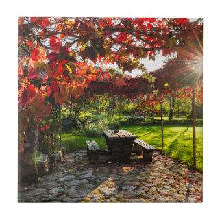 Sun durch Herbst-Blätter, Kroatien Fliese
