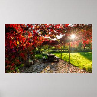 Sun durch Herbst-Blätter, Kroatien Poster