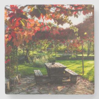 Sun durch Herbst-Blätter, Kroatien Steinuntersetzer