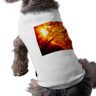 Sun-Eruption - riesiger Vorsprung Shirt