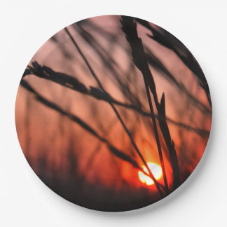 Sun im Gras kundenspezifischen PapierTeller 9 Zoll