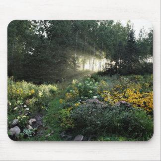 Sun Rays Ende September Gärten Mousepad