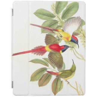 Sunbird-Vogel-Tier-Tiere botanisch iPad Smart Cover