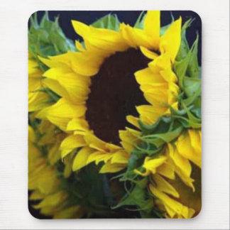 Sunfllower Studie durch debbieophotography Mousepad