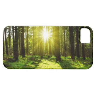 Sunlight in Forest. Etui Fürs iPhone 5
