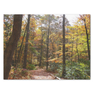 Sunlit Fall-Spur im Lorbeer-Hügel-Staats-Park Seidenpapier