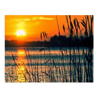 Sunset See-Postkarte Postkarte