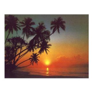 Sunsetisland Postkarte