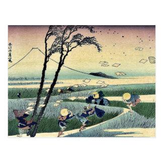 Sunshu ejiri durch Katsushika, Hokusai Ukiyoe Postkarte