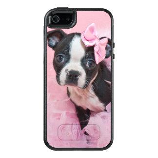 Super niedlicher Boston-Terrier-Welpe, der eine OtterBox iPhone 5/5s/SE Hülle