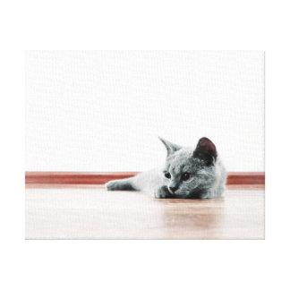 SUPER NIEDLICHES Kätzchen-Porträt - Leinwanddruck