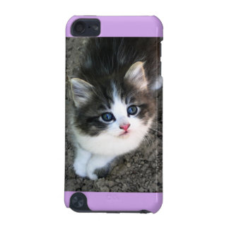 SUPER NIEDLICHES Streukätzchen iPod Touch 5G Hülle