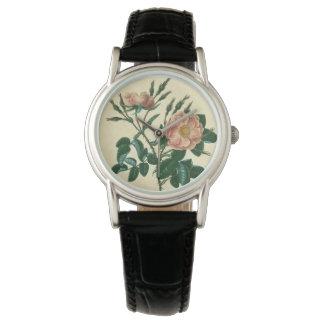 Süße Briar-Rose Armbanduhr