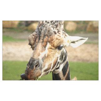 süße Giraffe Stoff
