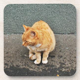Süße Katze auf der Straße Untersetzer