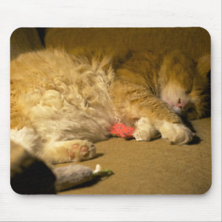 Süße Träume, Miezekatze-Katze Mousepad