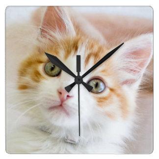 Süßer blauer mit Augen Kitty Quadratische Wanduhr