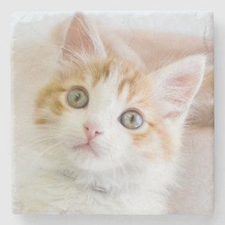 Süßer blauer mit Augen Kitty Steinuntersetzer