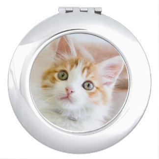 Süßer blauer mit Augen Kitty Taschenspiegel