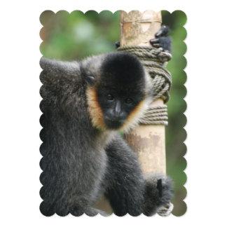 Süßer Capuchin-Affe 12,7 X 17,8 Cm Einladungskarte
