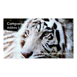 Süßer gegenübergestellter weißer Tiger Visitenkarten