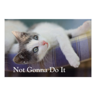 Süßer Kitty im karierten Bett Poster