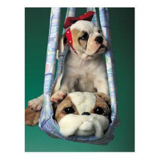 Süßer kleiner Bulldoggen-Welpe Postkarte