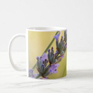Süßer Lavendel Kaffeetasse