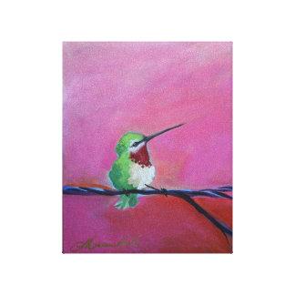 Süßer Lil Kolibri Leinwanddruck