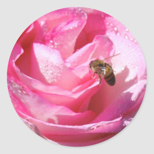 Süßer Nektar nach einer heller Regen-Dusche, Blume Sticker