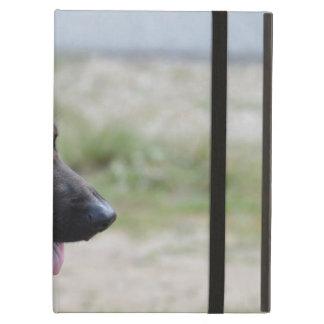 Süßer Schäferhund-Hund