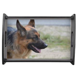 Süßer Schäferhund-Hund Tabletts
