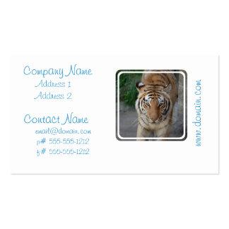 Süßer Tiger Visitenkarten