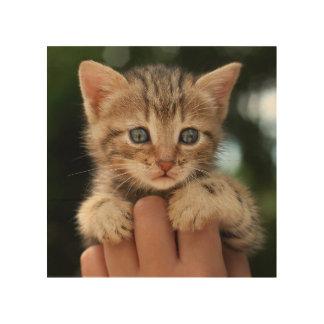 Süßes Baby-Kätzchen Holzwanddeko