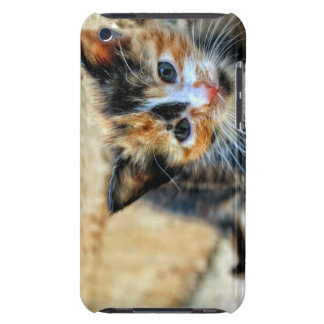 Süßes Kätzchen, das SIE betrachtet Barely There iPod Cover