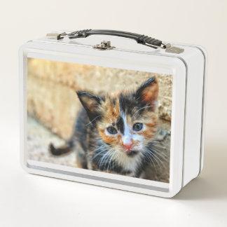 Süßes Kätzchen, das SIE betrachtet Metall Lunch Box