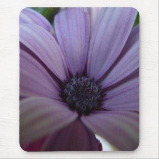 Süßes Lavendel-Gänseblümchen Mousepad