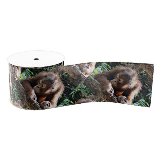 Süßes Orang Baby Ripsband