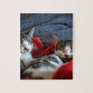 Süßes Schlafen Kätzchen Puzzle