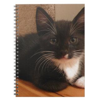Süßes Schwarzweiss-Kätzchen, das SIE betrachtet Spiral Notizblock