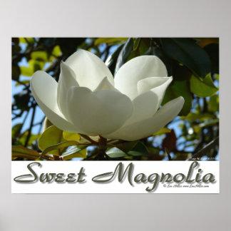 Süßes südliche Magnolien-Plakat Poster