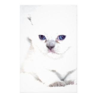 Süßes weißes Kätzchen Briefpapier