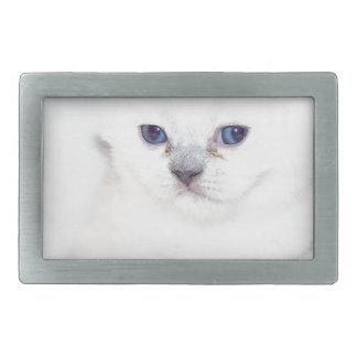 Süßes weißes Kätzchen Rechteckige Gürtelschnalle