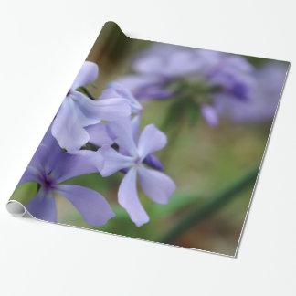 Süßes William-Blumenverpackungspapier Geschenkpapier
