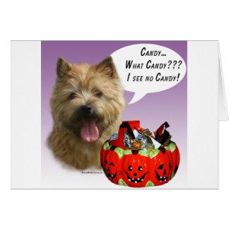Süßigkeit Norwichs Terrier Halloween Karte