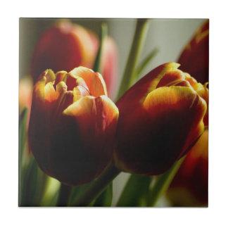 Süßigkeits-Mais-Tulpe-Keramik-Fliese Kleine Quadratische Fliese