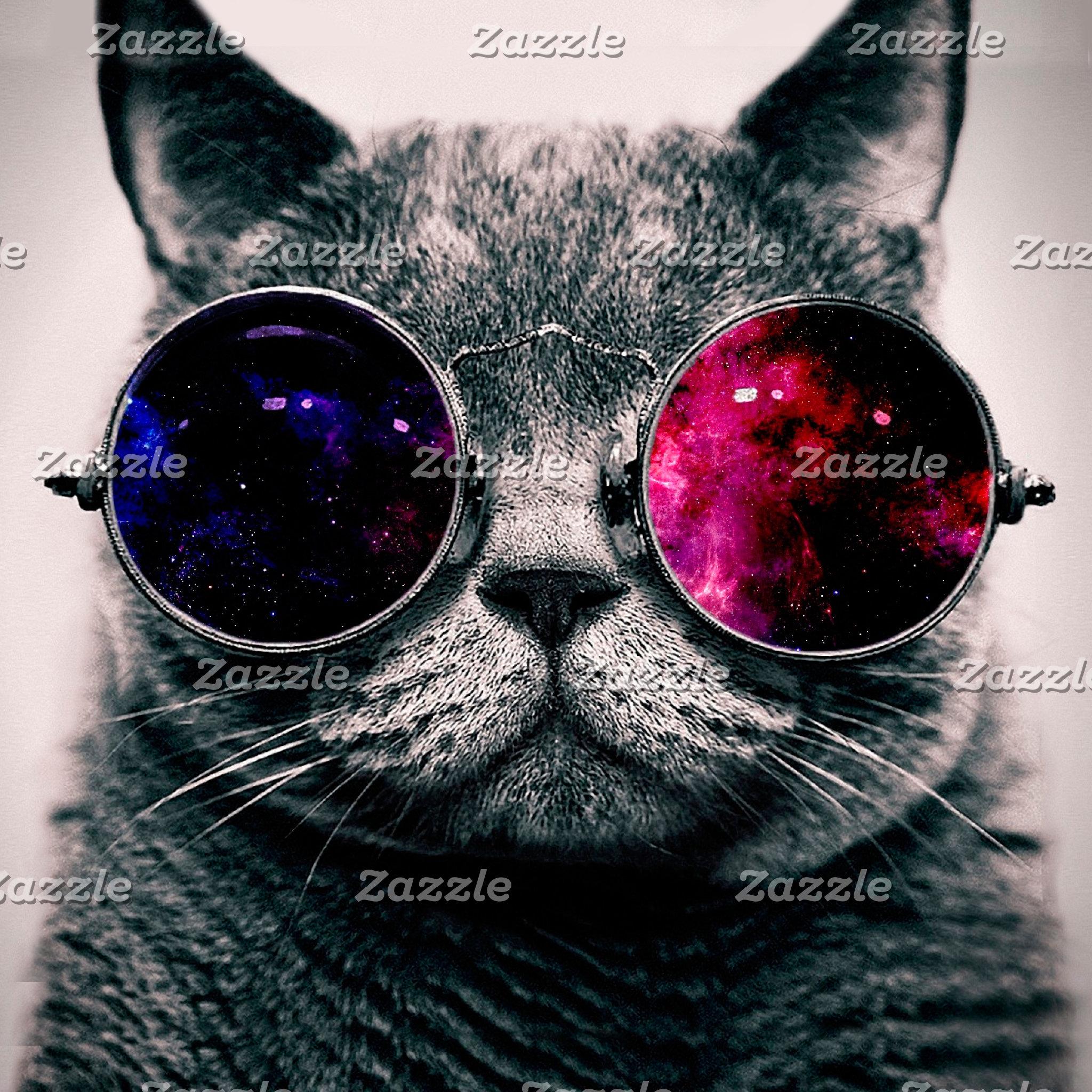 sunglasses cat