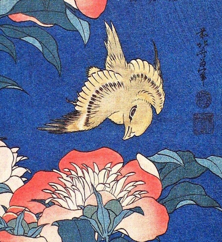 Birds + Flowers