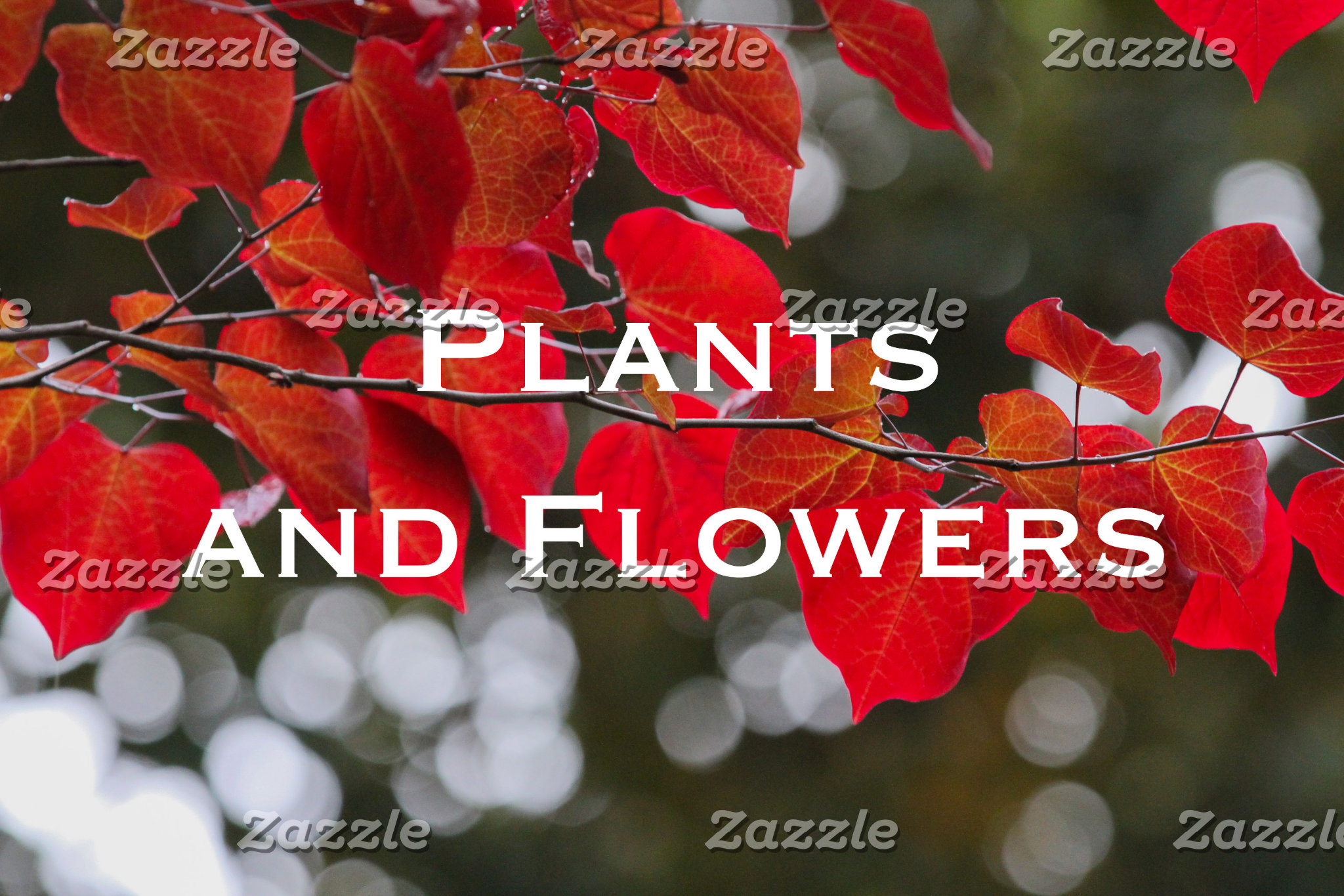 Plants and Flowers
