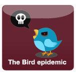 Bird Epidemic